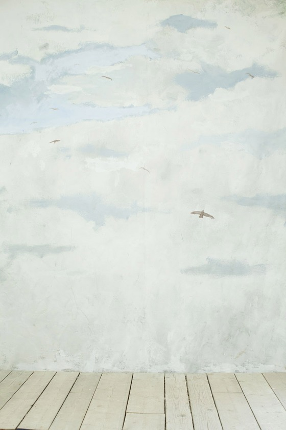 The Birdwathcer 2013